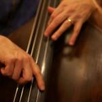 Steve Count Trio, 3